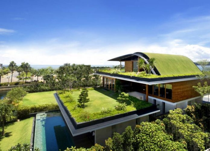zeleni krovovi